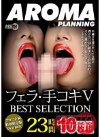 フェラ・手コキV BEST SELECTION