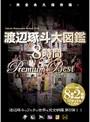 渡辺琢斗大図鑑 8時間 Premium Best 5