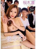 Watch Reverse Harem Of Active Rin Sakuragi A Disturbed Husband Of Seven Polyandry