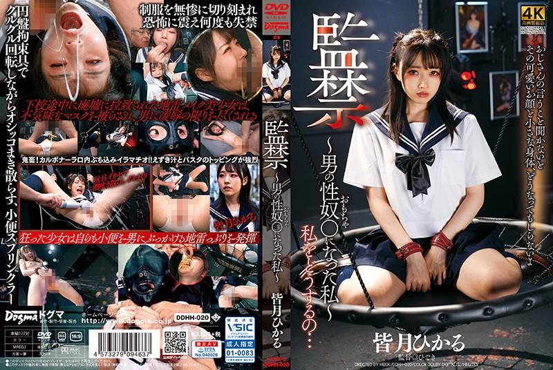 http://pics.dmm.co.jp/mono/movie/adult/ddhh020/ddhh020pl.jpg