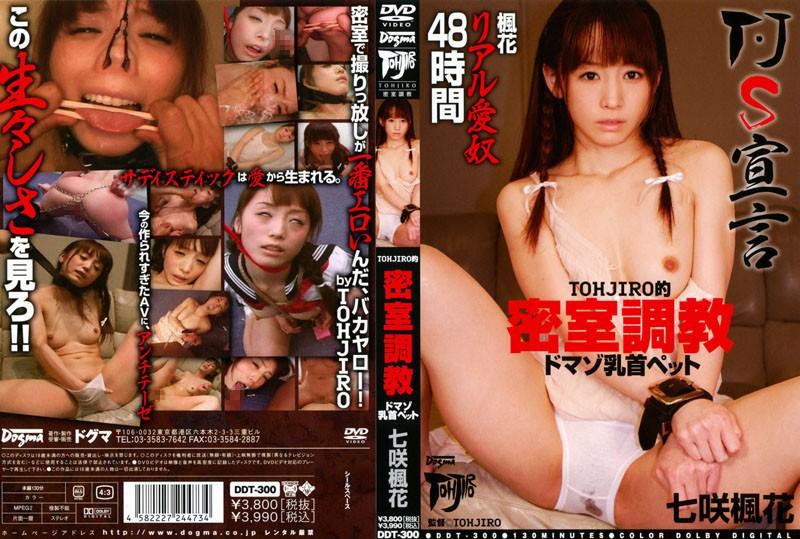 調教 DDT-300 TOHJIRO的 密室調教 ドマゾ乳首ペット 七咲楓花 セーラー服  拘束  淫乱、ハード系