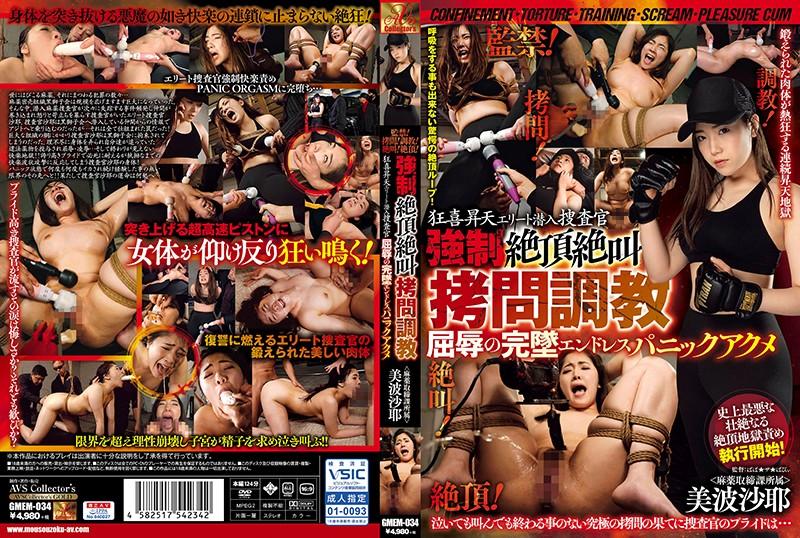 http://pics.dmm.co.jp/mono/movie/adult/gmem034/gmem034pl.jpg