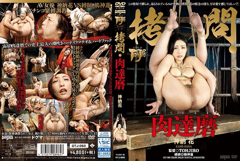 gtj060 拷問・肉達磨 神納花