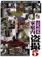「近親相姦家庭内盗撮 5」のパッケージ画像