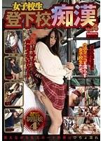 「女子校生登下校痴漢 vol.4」のパッケージ画像