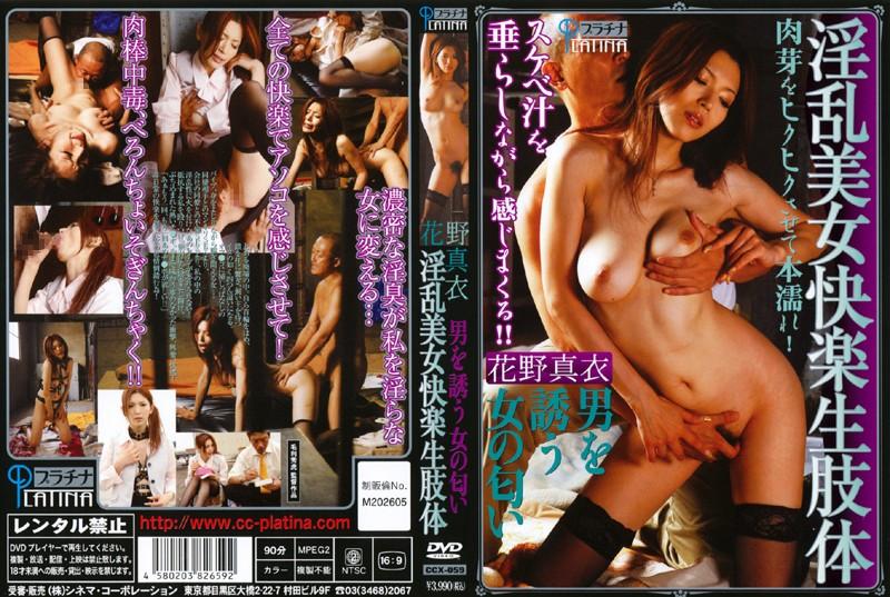 CCX-059 男を誘う女の匂い 淫乱美女快楽生肢体 花野真衣