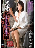 Image IRO-08 Housewife Train Molester – Touch The Isoji Ha Ha ~ Anno Yumi