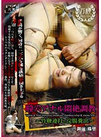 YA-003 Vagina Anal Lesbian Couples Torture - Takemuchi Battered And Enema Shit Out Of Sight Tamasato