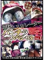 階段・エスカレーターパンチラスペシャル Vol.1