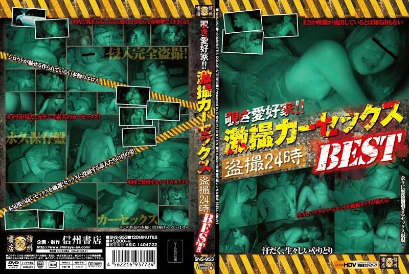 [SNS-953] 覗き愛好家!!激撮カーセックス盗撮24時 BEST SNS