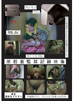 「屋根裏監禁記録映像」のパッケージ画像
