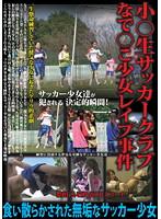 「小○生サッカークラブ なで○こ少女レイプ事件」のパッケージ画像