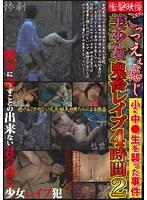「衝撃映像 ごっつえぇ感じ美少女鬼畜レイプ4時間 小・中●生を襲った事件 2」のパッケージ画像