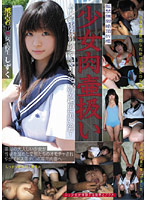 「少女肉壷扱い 17」のパッケージ画像