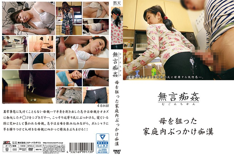 DMAT-173 Domestic Topped Molester Aimed At The Mother