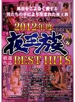 「2012年度 夜王族厳選作品BEST HITS」のパッケージ画像