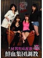 「M男育成屋敷 鮮血集団調教」のパッケージ画像