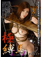 Watch Tied Up Horse 9 - Yuria Ashina
