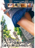 AOZ-203z - Rape Pies Push Misplaced Anger Upskirt Voyeur Of School Girls Is Bale