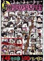 「風中の少女 総集編 VOL.1」のパッケージ画像