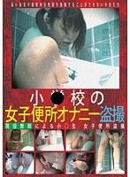 「小●校の女子便所オナニー盗撮」のパッケージ画像