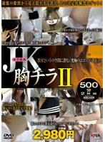 JK胸チラ500分2枚組 II