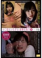 「ドキュメント性教育 小○生にいたずら!凌辱行為!! 4 りな」のパッケージ画像
