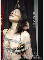 「静粛故契 美弥子」のパッケージ画像