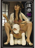 「達磨飼育 ~美脚長身コンパニオン~」のパッケージ画像
