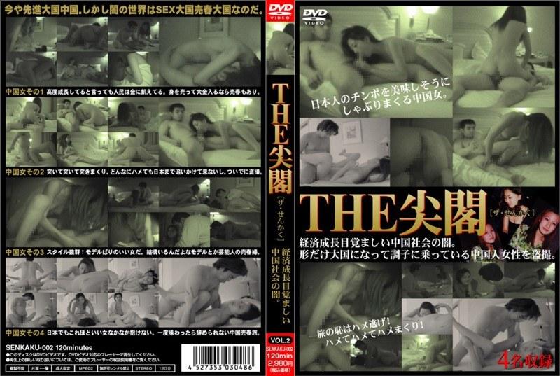 senkaku002 THE 尖閣 VOL.2