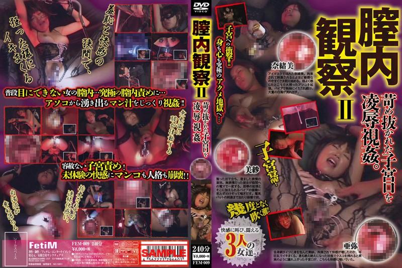 [FEM-009] 膣内観察 II 苛め抜かれた子宮口を凌辱視姦 フェチムエンターテインメント