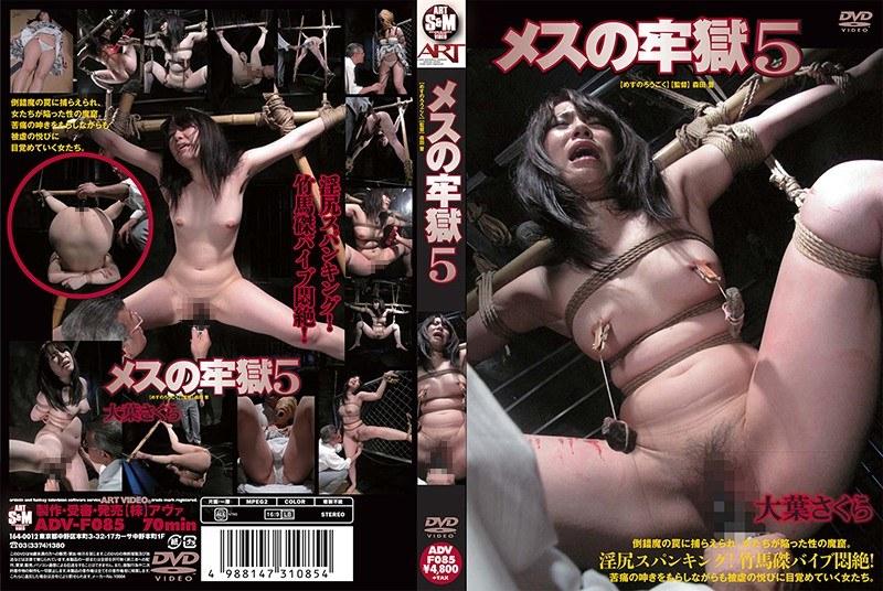 [ADVF-085] メスの牢獄 5 大葉さくら 羞恥 バイブ 縛り・緊縛
