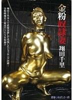 「金粉奴隷妻 翔田千里」のパッケージ画像