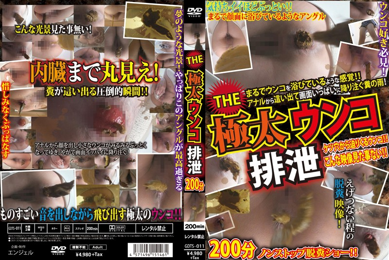 GDTS-011 THE Thick Shit Excretion 200 Minutes