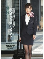 Watch Imprisonment Is Fucked The Beauty Cabin Attendant Aino Kishi