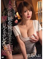 人妻の妊娠危険日ばかりを狙う顔の見えないレ×プ魔 君島みお MEYD-384画像