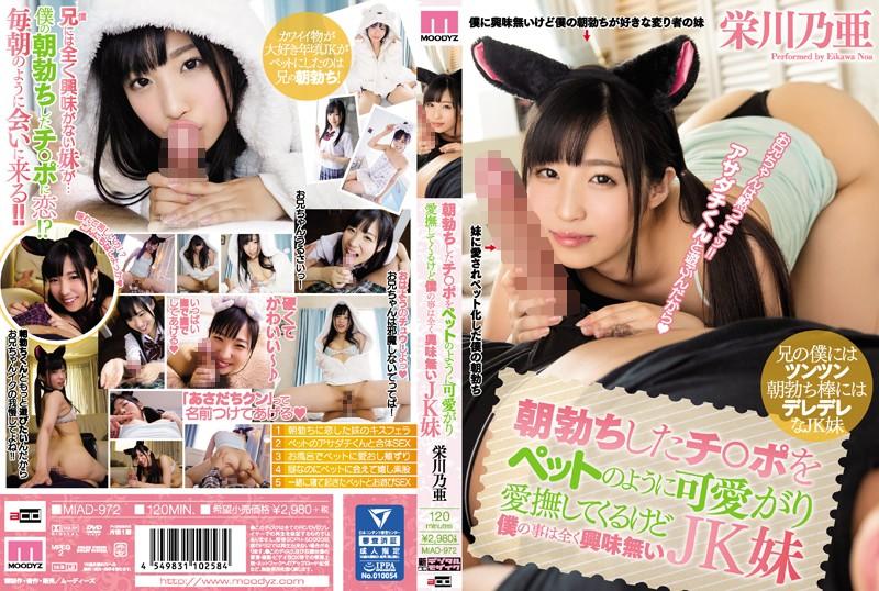 朝勃ちしたチ○ポをペットのように可愛がり愛撫してくるけど僕の事は全く興味無いJK妹 栄川乃亜 MIAD-972