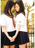 MUKD-101 Mito Misaki Here