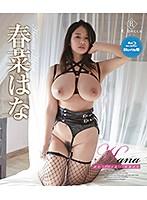 [REBDB-338] Hana Haruna in Bali!