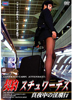 DVS-032 Slutty Midnight Flight Stewardess Contract