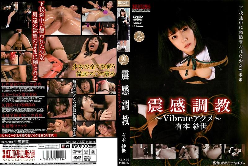 NBD-54 Xingang Torture ~ ~ Vibrate Acme Arimoto Sayo  Abuse