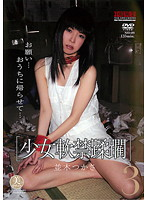 「少女軟禁蹂躙3 並木つかさ」のパッケージ画像