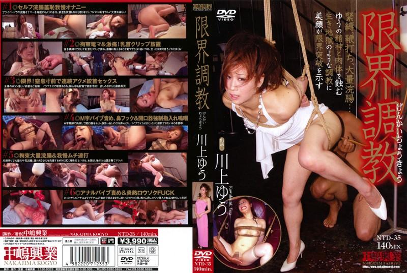 Yu Kawakami Limit Torture