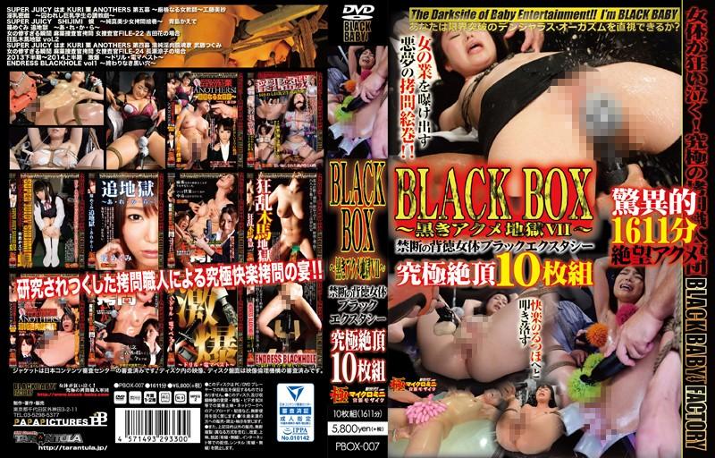 BLACK BOX 〜黒きアクメ地獄VII〜 禁断の背徳女体ブラックエクスタシー 究極絶頂10枚組