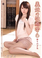 RBD-408 - Yui Uehara brunt of anger 6 erogenous zones sister-in-law