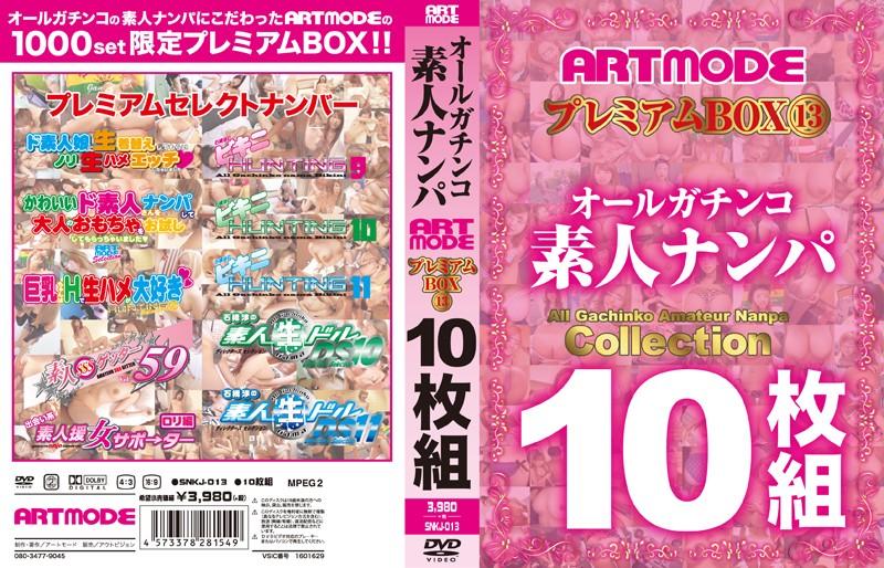 [SNKJ-013] オールガチンコ 素人ナンパ ARTMODE プレミアムBOX 13 10枚組