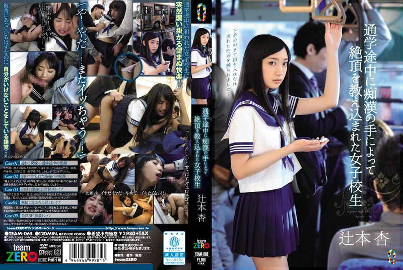 TEAM-065 In The Middle School We Were Taught The Capstone By The Hand Of Molesting School Girls Tsujimoto Apricot