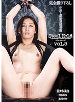 Steel Hold vol.5の画像
