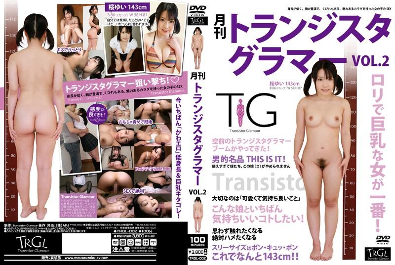 月刊トランジスタグラマー VOL.2