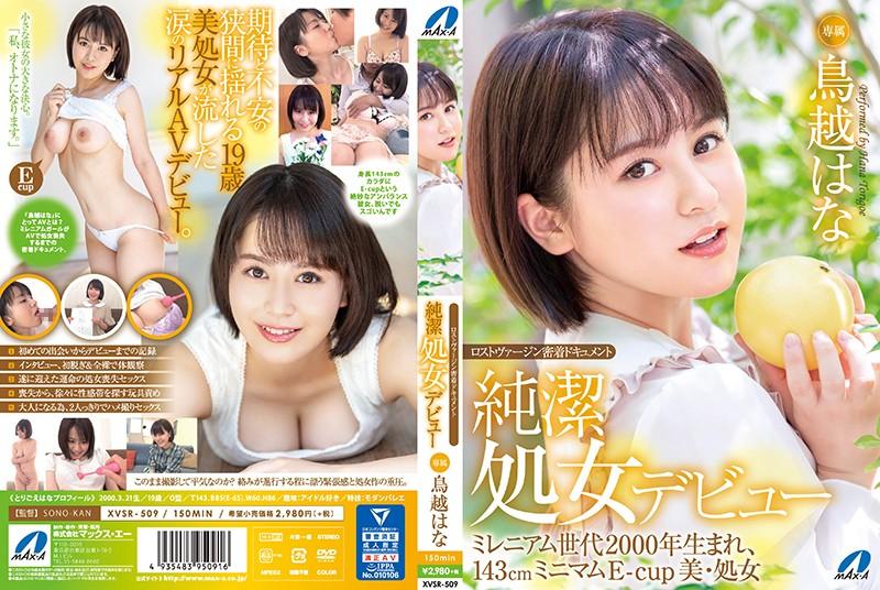 http://pics.dmm.co.jp/mono/movie/adult/xvsr509so/xvsr509sopl.jpg